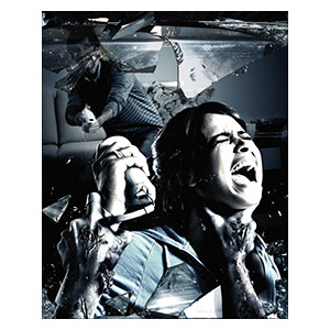 Resident Evil. Размер: 20 х 25 см
